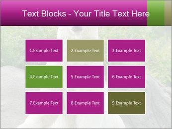 0000083902 PowerPoint Template - Slide 68