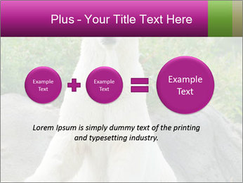 0000083902 PowerPoint Template - Slide 75