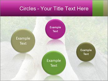 0000083902 PowerPoint Template - Slide 77