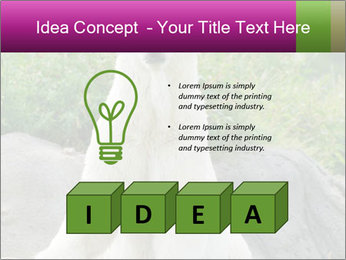 0000083902 PowerPoint Templates - Slide 80