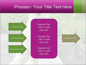 0000083902 PowerPoint Template - Slide 85