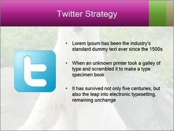 0000083902 PowerPoint Template - Slide 9