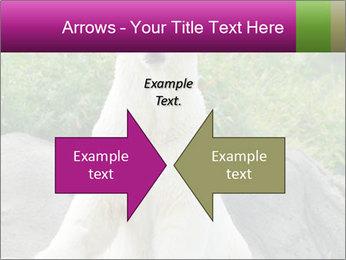 0000083902 PowerPoint Template - Slide 90