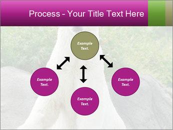 0000083902 PowerPoint Template - Slide 91