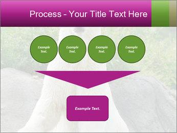 0000083902 PowerPoint Template - Slide 93