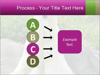 0000083902 PowerPoint Template - Slide 94