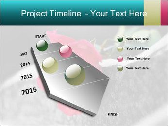 0000083910 PowerPoint Template - Slide 26