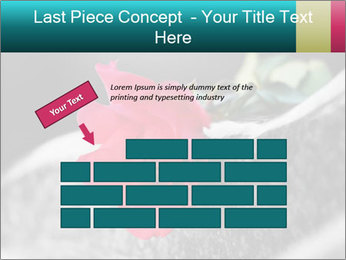 0000083910 PowerPoint Template - Slide 46