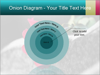 0000083910 PowerPoint Template - Slide 61