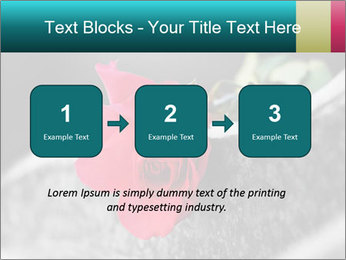 0000083910 PowerPoint Template - Slide 71