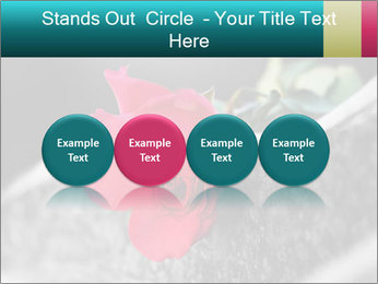 0000083910 PowerPoint Template - Slide 76