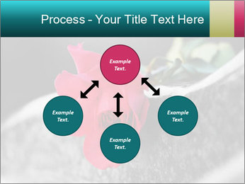 0000083910 PowerPoint Template - Slide 91