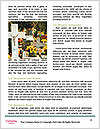 0000083910 Word Templates - Page 4