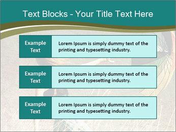0000083914 PowerPoint Template - Slide 58
