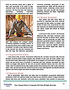 0000083927 Word Templates - Page 4