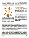 0000083928 Word Templates - Page 4