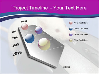 0000083933 PowerPoint Template - Slide 26