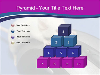0000083933 PowerPoint Template - Slide 31