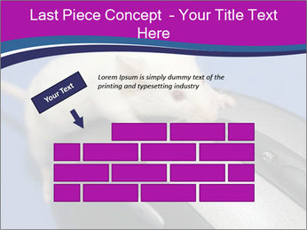 0000083933 PowerPoint Template - Slide 46