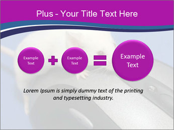 0000083933 PowerPoint Templates - Slide 75