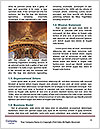 0000083956 Word Template - Page 4