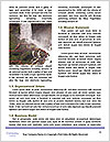 0000083960 Word Templates - Page 4