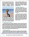 0000083963 Word Templates - Page 4