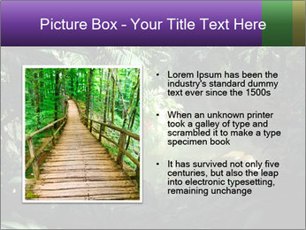 0000083968 PowerPoint Template - Slide 13