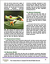0000083968 Word Template - Page 4