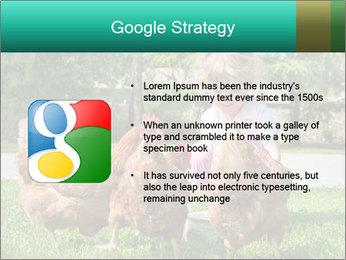 0000083977 PowerPoint Template - Slide 10