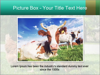 0000083977 PowerPoint Template - Slide 16