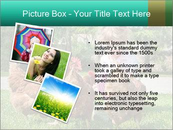 0000083977 PowerPoint Template - Slide 17