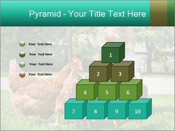 0000083977 PowerPoint Template - Slide 31