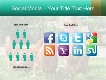 0000083977 PowerPoint Template - Slide 5