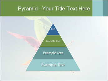0000083992 PowerPoint Templates - Slide 30