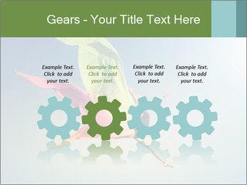 0000083992 PowerPoint Templates - Slide 48