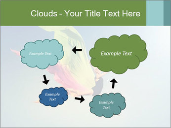 0000083992 PowerPoint Templates - Slide 72