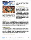 0000083996 Word Templates - Page 4