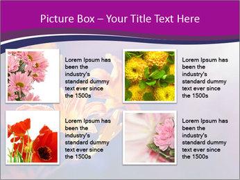 0000083998 PowerPoint Template - Slide 14