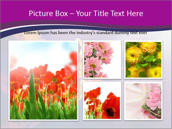 0000083998 PowerPoint Template - Slide 19