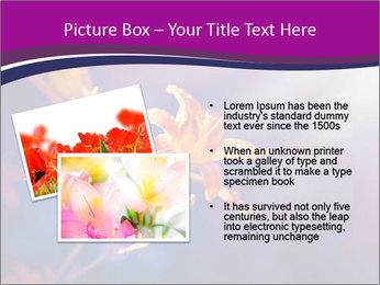 0000083998 PowerPoint Template - Slide 20
