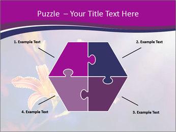 0000083998 PowerPoint Template - Slide 40