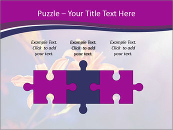 0000083998 PowerPoint Template - Slide 42