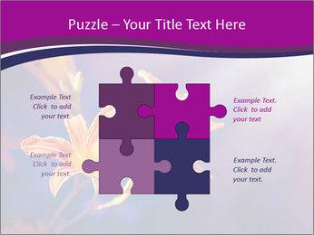 0000083998 PowerPoint Template - Slide 43