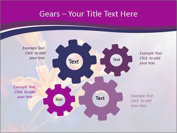 0000083998 PowerPoint Template - Slide 47