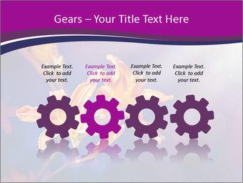 0000083998 PowerPoint Template - Slide 48