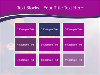 0000083998 PowerPoint Template - Slide 68