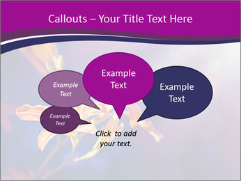 0000083998 PowerPoint Template - Slide 73