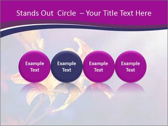 0000083998 PowerPoint Template - Slide 76