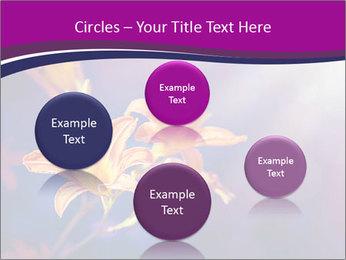 0000083998 PowerPoint Template - Slide 77